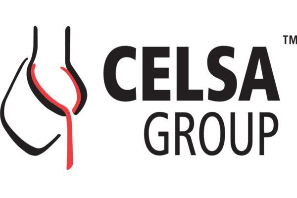 celsa group celebra la 3 jornada del cercle de directors tic
