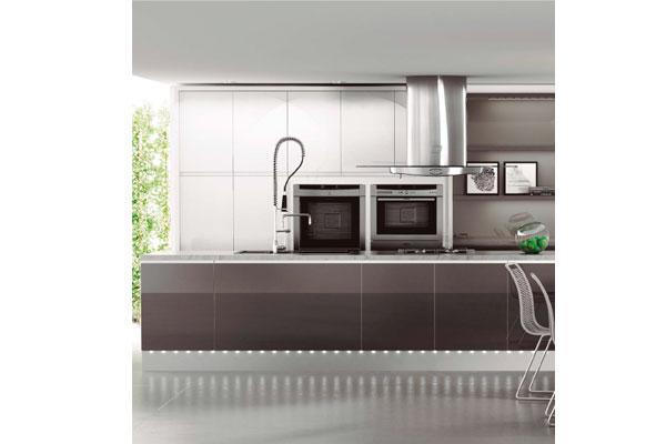 ergonoma funcionalidad y esttica son las cualidades que estn presentes en el amueblamiento de la cocina