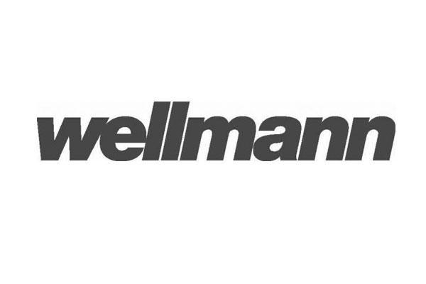 wellmann suspende definitivamente su actividad