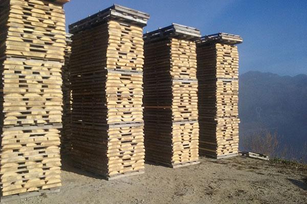 gabarr apuesta por la comercializacin de maderas certificadas y potencia las especies locales