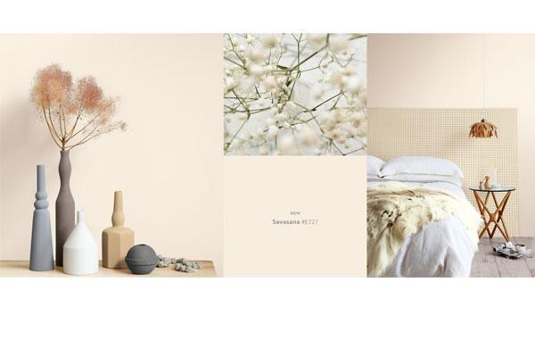 la mxima expresin del color llega a casa decor con valentine