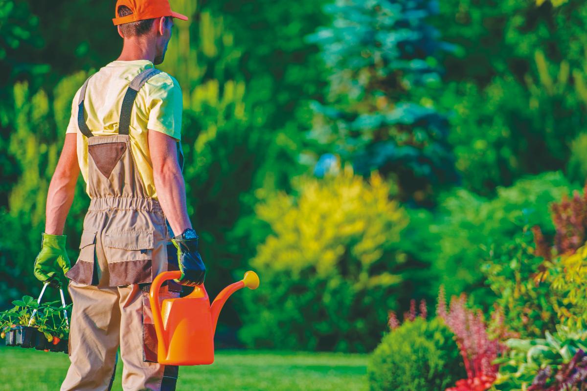 seis-trucos-imprescindibles-para-ahorrar-agua-en-el-jardin