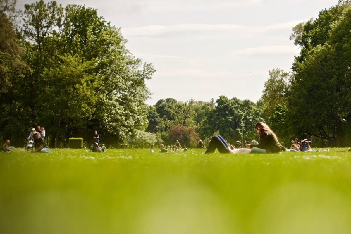 las personas que viven cerca de espacios verdes tienen menos riesgo de sndrome metablico