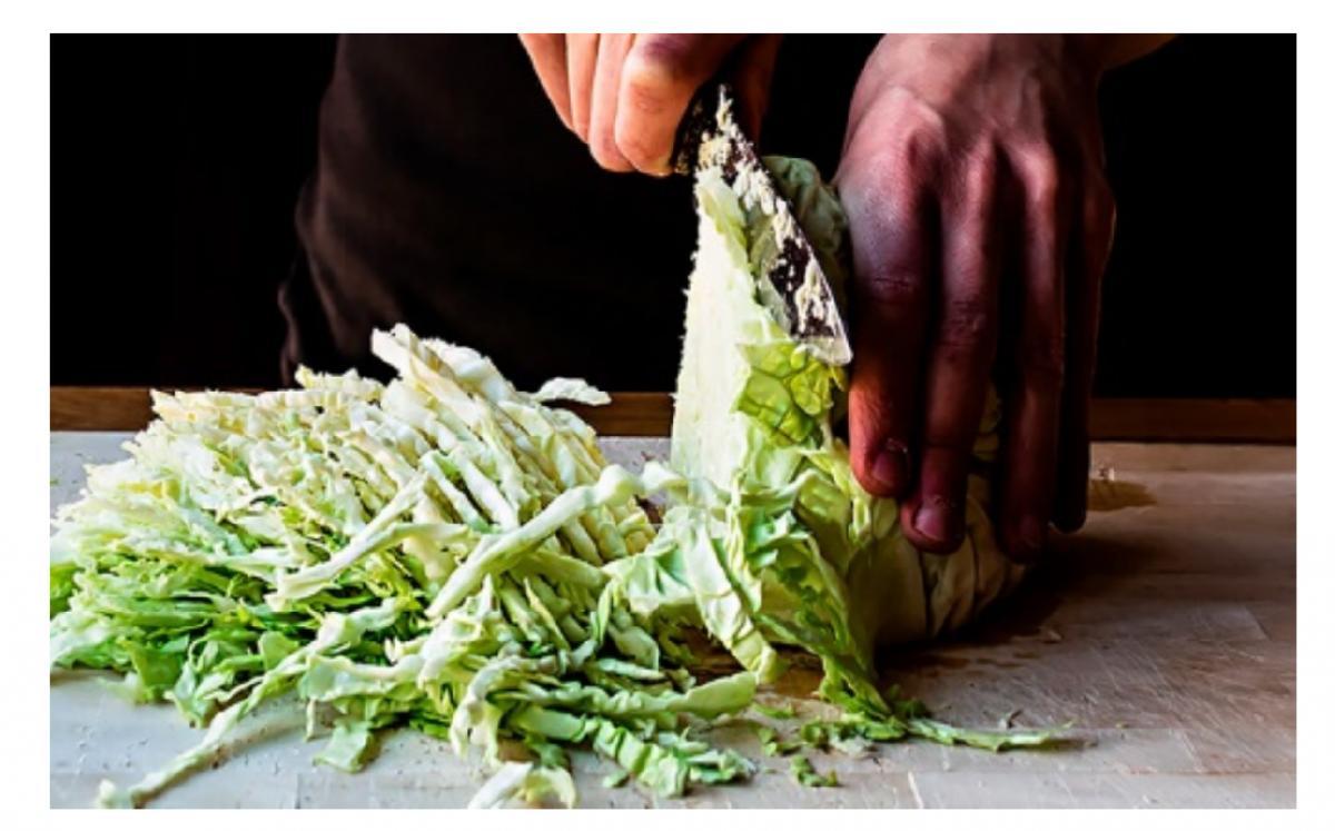 los beneficios de los alimentos probiticos y prebiticos de la mano de teka