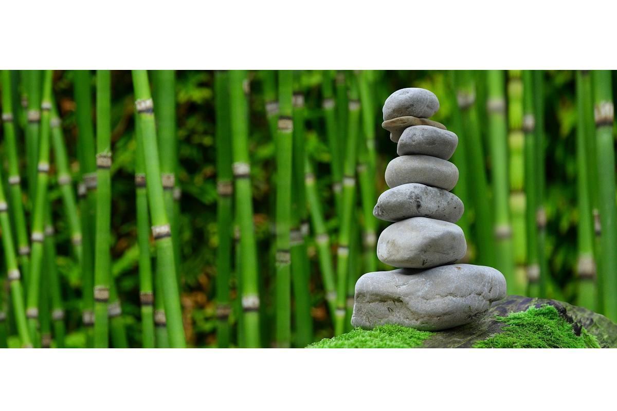 tres-casos-de-exito-sobre-la-promocion-de-la-salud-y-el-bienestar-en-la-empresa