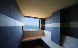 freixanet saunasport presenta los baos de vapor wellpro