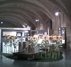 schmidt cocinas congrega 3000 personas en barcelona