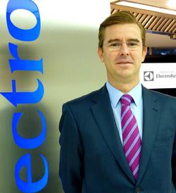 fernando jimnez delgado nuevo director de marketing de electrolux