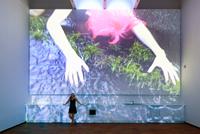 franke participa en una muestra de arte