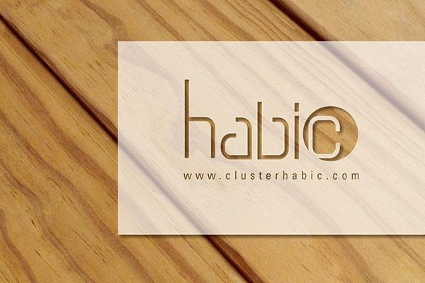 cuatro empresas vascas de la madera explican sus casos de xito en el instituto de la construccin del csic
