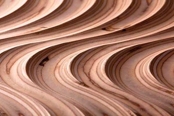 emedec presentar su panelate renovado en maderalia
